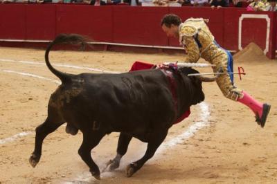 20101201222032-grave-cogida-de-rafaelillo.jpg